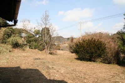 古民家の庭2