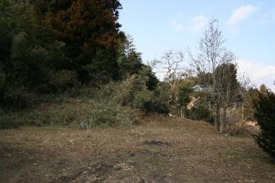 古民家の庭3