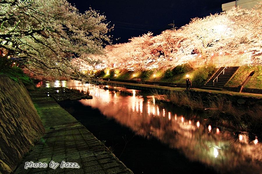 美祢市さくら公園3