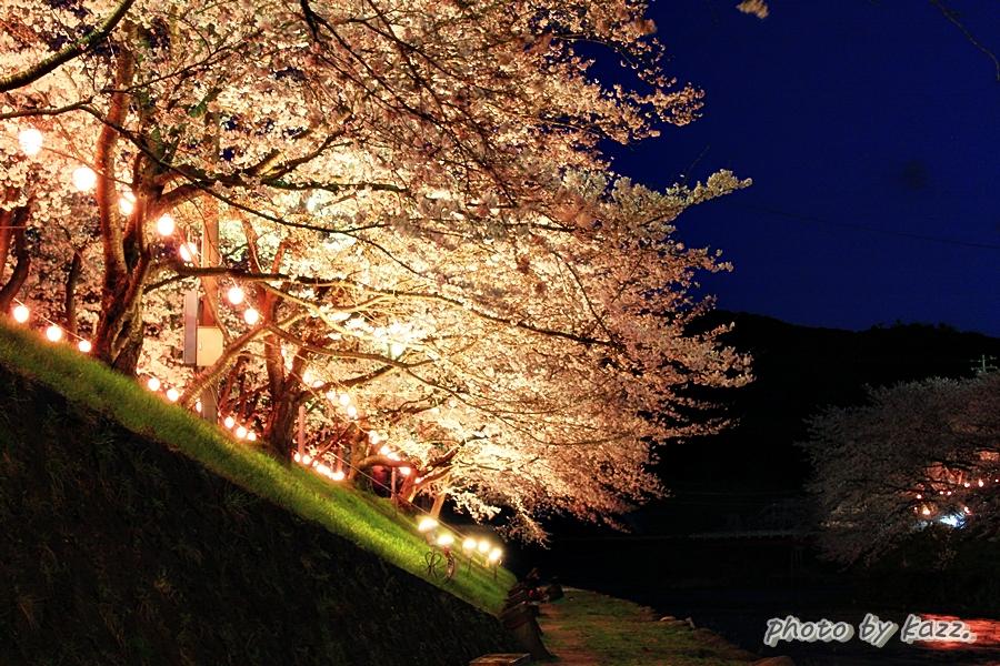 美祢市さくら公園2