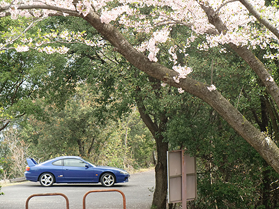 桜の木の下で駐車場のシルビア