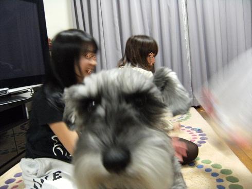 2011_0203_205400-DSCF7469.jpg