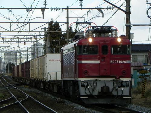 DSCN8129_convert_20101230154058.jpg