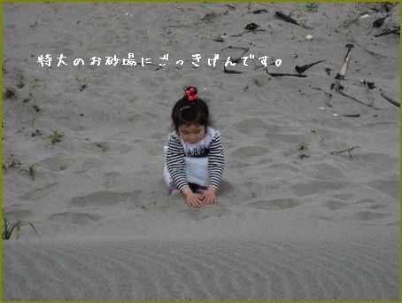初めての砂丘にびっくり。