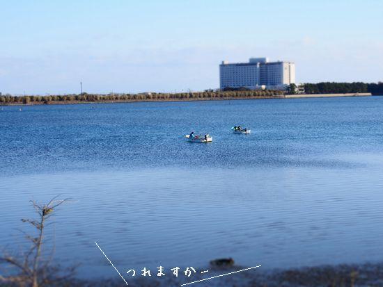 浜名湖です。
