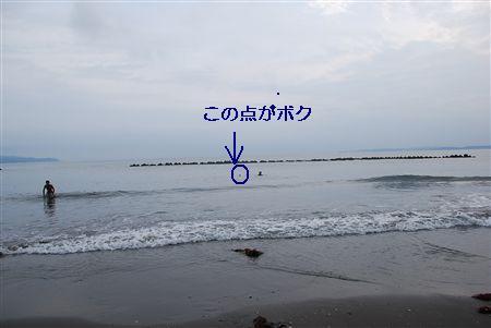 2010 355_R