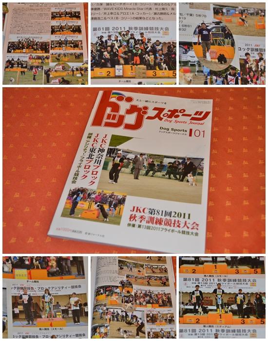 dog sports journal