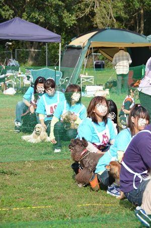 253saiko_R.jpg