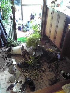 地震(玄関)