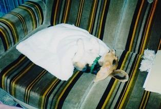 お寝んね中の小さい頃のケン3