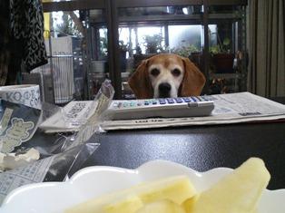ゆで卵ください