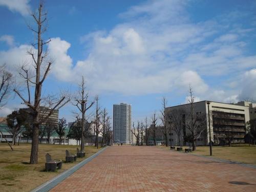 2011.02.15 勝山公園1