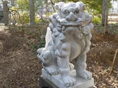 2011.02.15 八坂神社6