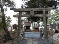 2011.02.15 八坂神社10