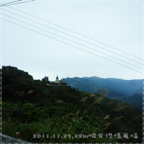 P1080907-1.jpg