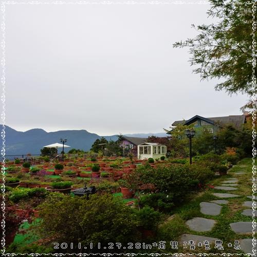 P1080920-1.jpg
