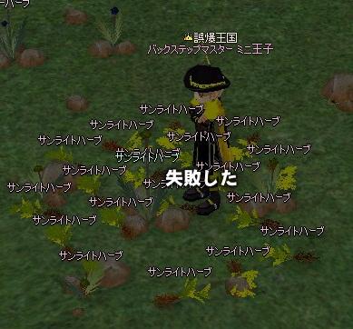 mabinogi_2012_07_02_002.jpg