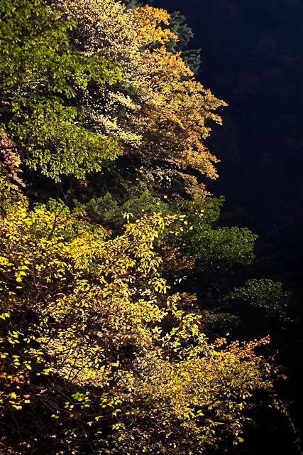 西沢渓谷-3