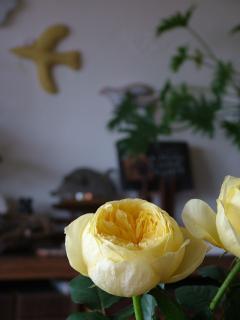 黄色い鳥とバラ