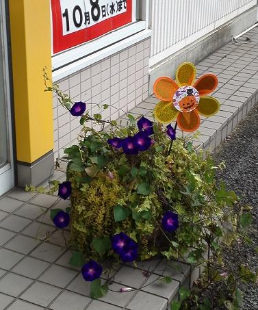 ハロウィン店装 (2)