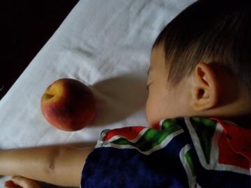 松本で桃をもらう