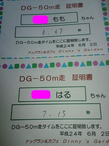 CA3G1207_20120604220118.jpg