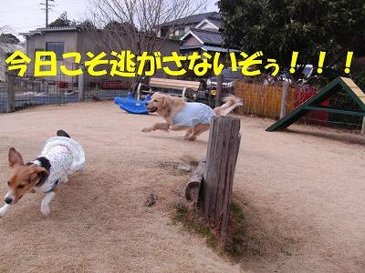 CIMG4041_sh01.jpg
