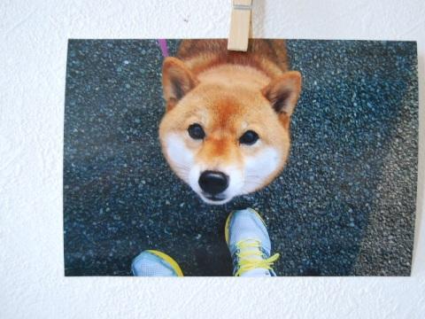 tsukitaku.jpg