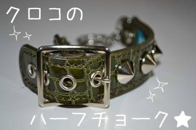 DSC_03222_convert_20110815220020.jpg