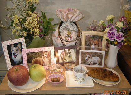 きなこ祭壇2012年8月25日