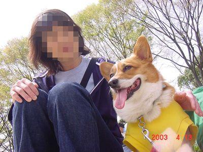 きなこ3歳おかあさんと小幡川