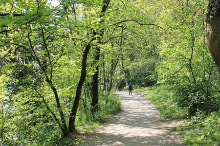 ローヌ川散歩04