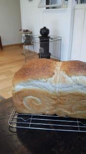 2.9の食パン
