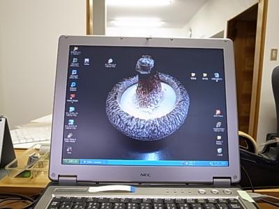きのこ侍PC画面
