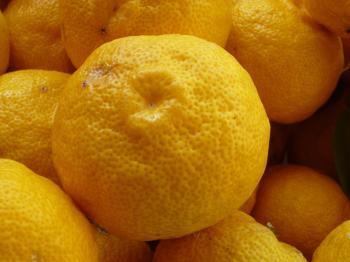 12月22日 柚子湯(冬至)の日です。