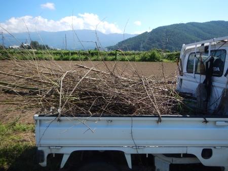 竹炭作り (2)