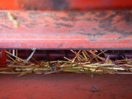 蕎麦の脱穀作業 (8)