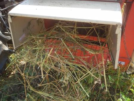 蕎麦の脱穀作業 (5)