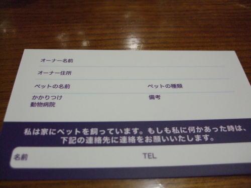 2010111403.jpg