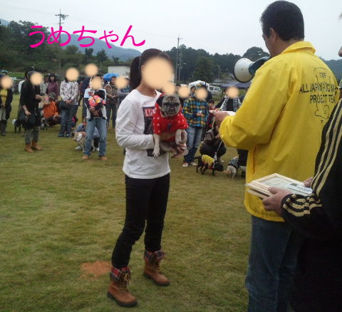 2011akioff13.jpg