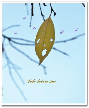 歌う落ち葉