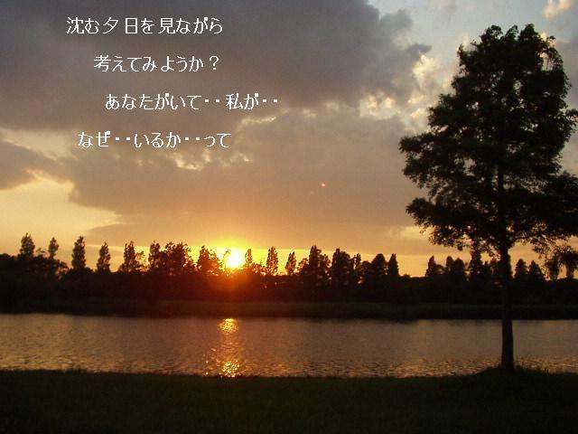 夕日見ながら