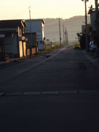 21日の朝