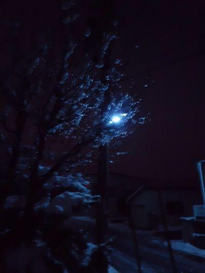 冬の風景3