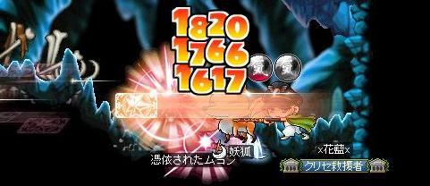 Maple120609_015951.jpg