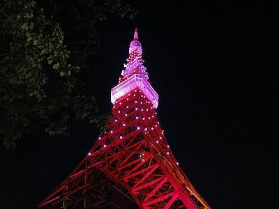 tower201010b.jpg