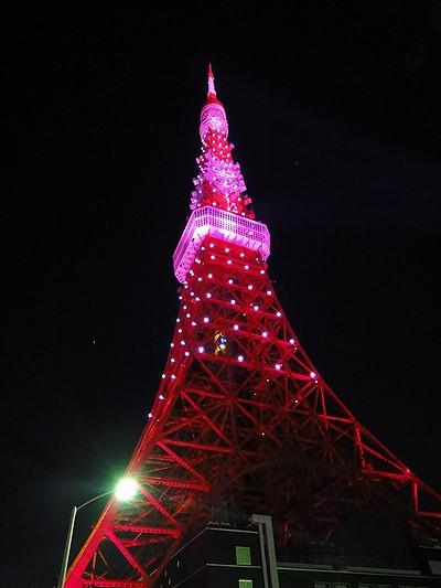 tower201010c.jpg