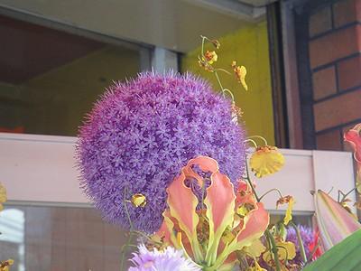 udon201006a.jpg