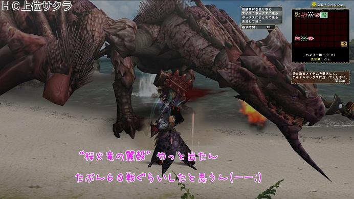 桜火竜の麗殻 やっと出たわ・・・