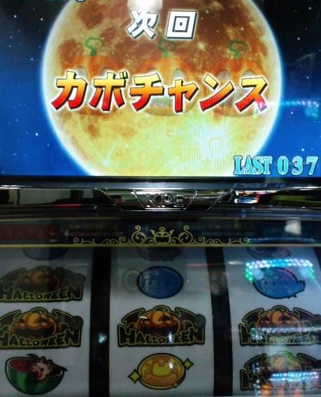 2011.2.18 BIG中 かぼちゃW揃い
